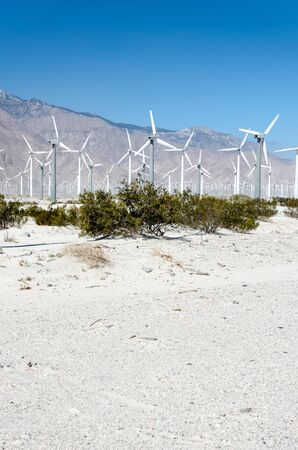 Wind farm turbines generate power near Palm Springs, California, in Riverside County.