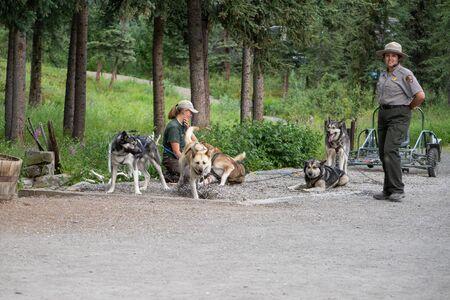 JULY 30 2018 - DENALI, ALASKA: National Park Service rangers give a sled dog demonstration with Alaskan Huskies