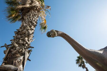 JUNE 30 2018 - CABAZON, CALIFORNIA: A brontosaurus statue looks up into the sky at the Cabazon Dinosaurs, a roadside attraction along Interstate 10 in California. Stock Photo - 139042021
