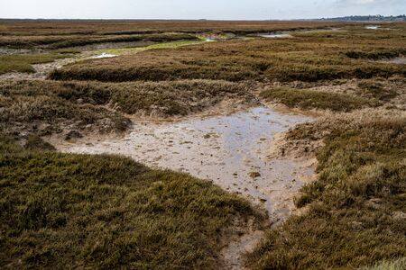 The swamp and wetlands near Barril Beach in Tavira Portugal Stock Photo