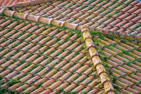 Abstract photo of clay rooftope tile shingles with grass, rust and mold growing in Porto, Portugal 版權商用圖片
