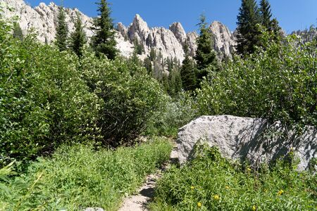 Beautiful scenery along a dirt hiking trail (Iron Creek Trail) leading to Sawtooth Lake in Idaho 版權商用圖片