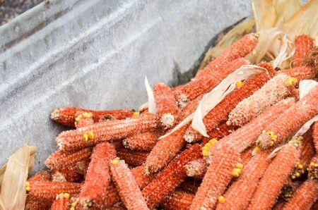 Sweet corn husks, eaten, thrown in a garbage bin. Selective focus
