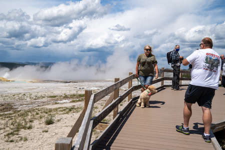 Yellowstone National Park - July 1, 2020: Tourists illegaly bring their pet dog on the boardwalks through the thermal geyser area. Dogs are not allowed on these trails