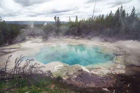 Steamy Emerald Spring in Yellowstone National Park, in the Norris Geyser basin area