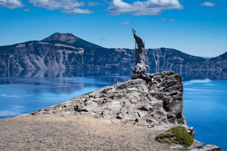 Petrified tree and a rock formation cliff along a crystal clear and calm Crater Lake National Park in Oregon