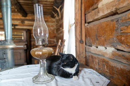 Spooky black cat sitting by a hurricane lamp on a table in an old log cabin. Taken in Fairplay, Colorado