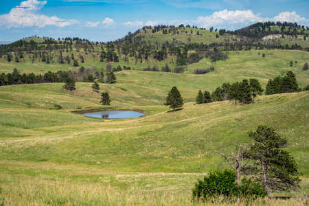 Pond with rolling hills in Custer State Park in South Dakota USA