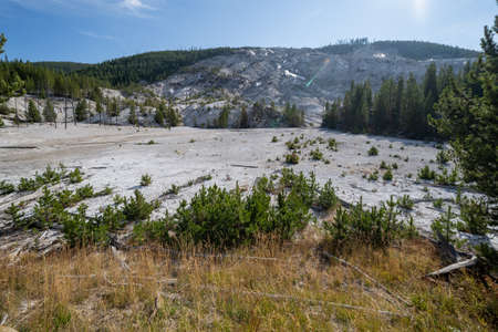 Roaring Mountain in Yellowstone National Park with hot springs and steam vents, in the morning sunshine