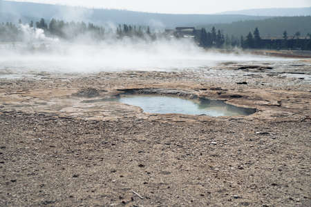 Vault Geyser, a hot spring thermal feature in the Upper Geyser Basin in Yellowstone National Park