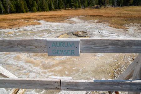 Aurum Geyser, a hot spring thermal feature in the Upper Geyser Basin in Yellowstone National Park 版權商用圖片