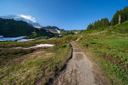 Hiking trail through Mt Rainier National Park in Washington State