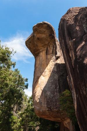 Cobra shaped rock in Sigiriya Palace, Sri Lanka  photo