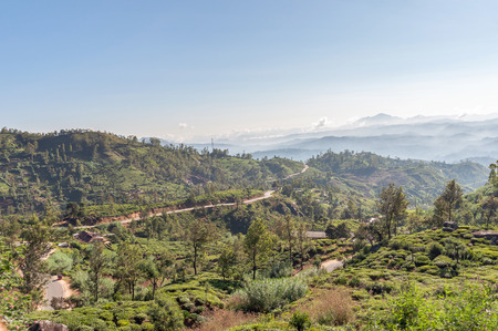 highlands region: Mountain landscape of Sri Lanka  Surroundings of Nuwara Eliya