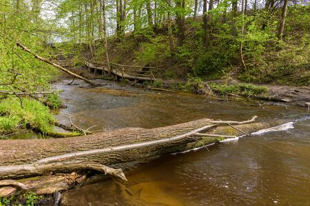 View of cascades on Tanew river in nature reserve Nad Tanwia in eastern Poland Banco de Imagens