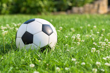 Black and white soccer ball on the grass in garden