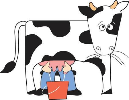 Vache à Guernesey trait par le fermier Banque d'images - 839139