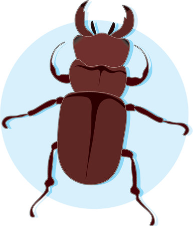 A brown insect on a blue circle background Çizim