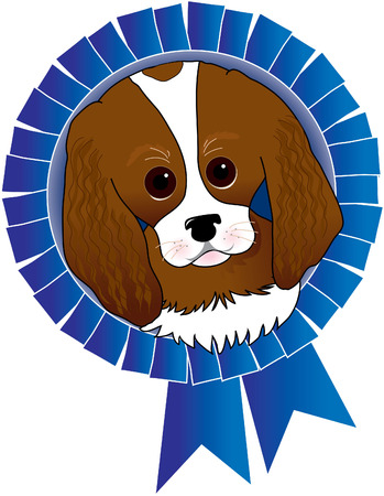 Cavalier King Charles Spaniel with a blue ribbon