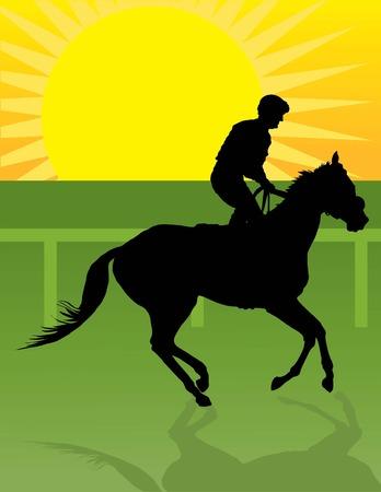 thoroughbred horse: Silueta de un jinete el ejercicio de su caballo  Vectores