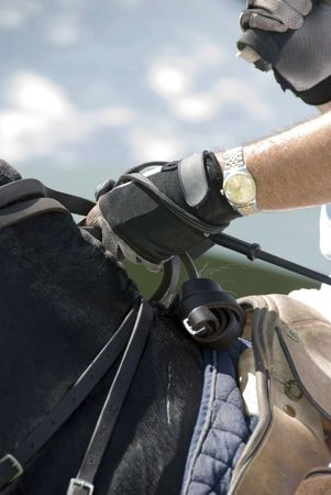mans gloved hand holding the reins of a polo pony. He has a gold watch on the hand that holds his riding crop and his other hand is holding his mallet. photo
