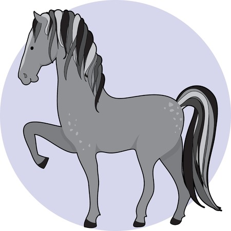 dapple horse: A dapple gray horse standing with one front leg up