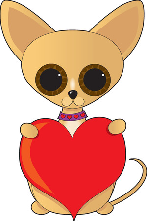 over sized: A cute little chihuahua with over sized eyes holding a big red heart.