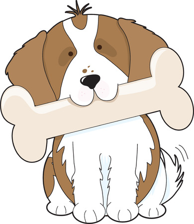 cavalier: King Charles Cavalier Spaniel holding a big bone in its mouth