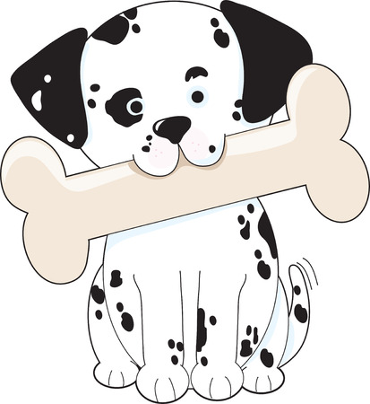 Cute Dalmatian puppy holding a big bone in its mouth