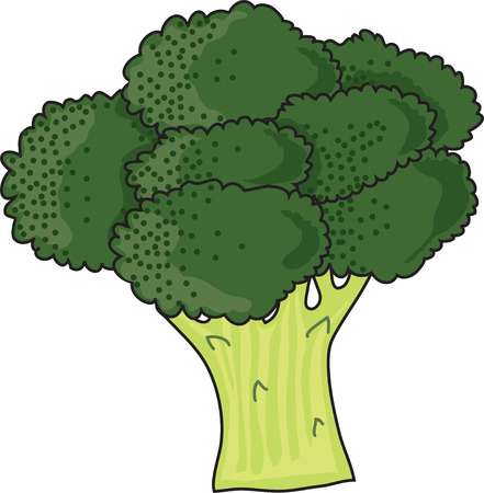 A bunch of green, leafy brocolli on a white background