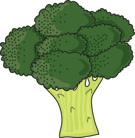 Een stelletje groen, loofrijke brocolli op een witte achtergrond