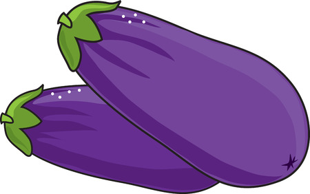 A pair of purple eggplant on a white background