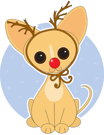 antlers: Chihuahua  dressed for Christmas as Rudolf