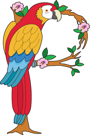 A parrot sitting on a branch with hibiscus blossoms. He is shaped like the letter P