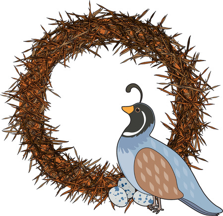 nest egg: A quail is sitting on a nest with her eggs. She is shaped like the letter Q Illustration