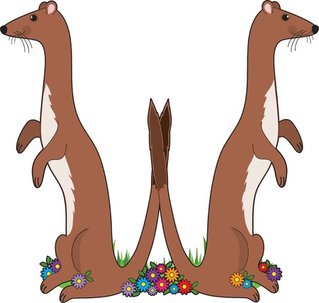 critter: A pair of weasels in the shape of the letter W Illustration