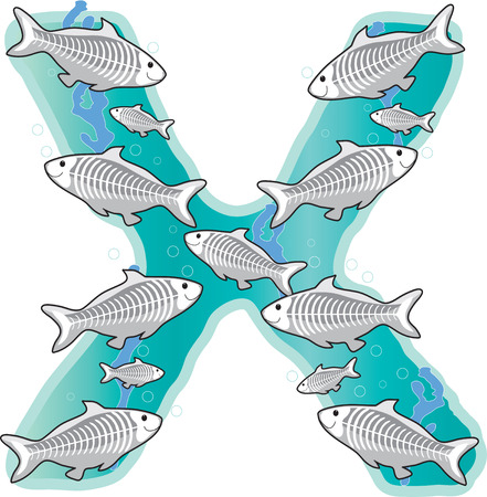 A school of X-Ray fish in the shape of the letter X Vector