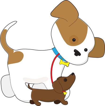 dog ears: A cute puppy is taking a little dachshund puppy for a walk
