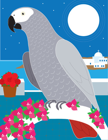An African Grey parrot resting on an archway in Greece