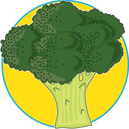 A bunch of broccoli on a bright yellow circle background