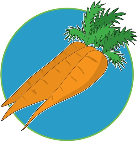 A bunch of carrots on a bright blue circle background
