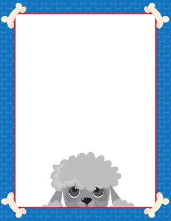 poodle: A frame or border featuring the face of a Poodle Illustration