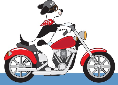 cartoon biker: A dog is riding a red motorcycle. His ears, scarf and tail are flying in the wind and his helmet has bone decals.