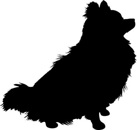 Eine Silhouette einer sitzenden Pommerschen Hund im Profil