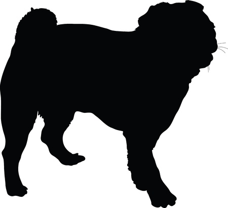 black pug: A silhouette portrait, in profile, of a standing Pug dog  Stock Photo