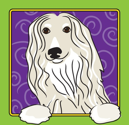 afghan hound: A cartoon image of an Afghan hound, created in the folk art tradition