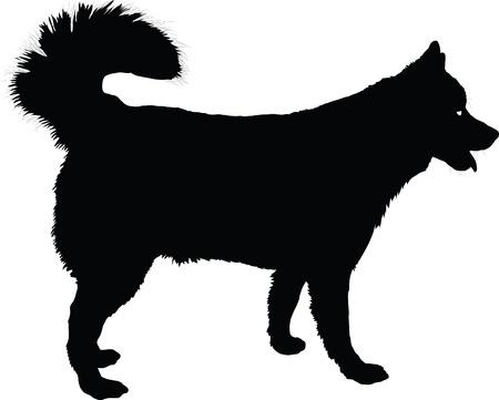 Een profiel van een Husky hond in zwart silhouet