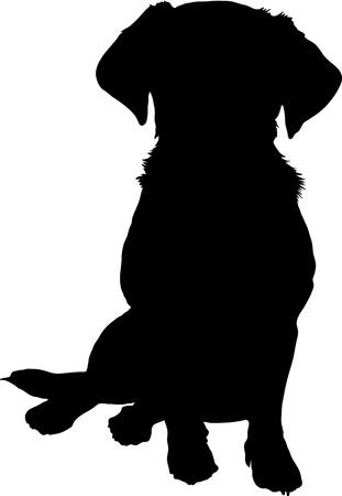Een zwart silhouet beeld van een pup zitten met uitzicht op de kijker