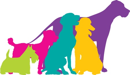 A group of five dogs, a Scottie, Mixed, German Pointer, Poodle and Great Dane are silhouetted in a variety of bright colours. photo
