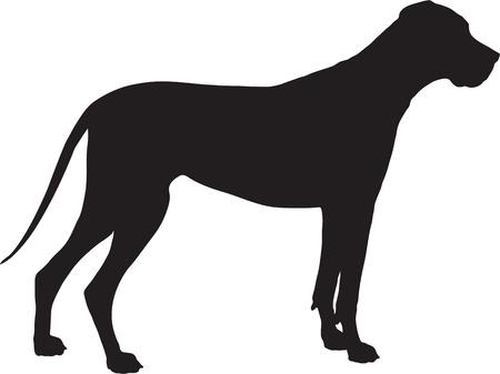 great dane: A Great Dane dog shown in black silhouette profile.